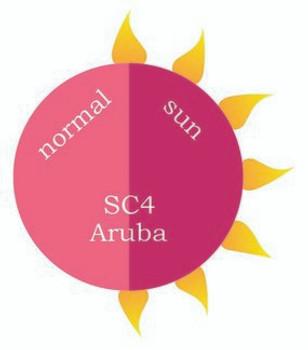 Dip Powder - SC4 Aruba