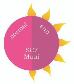 Dip Powder - SC7 Maui