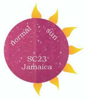 Dip Powder - SC23 Jamaica