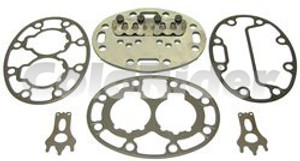 S-17-44105-PLT Valve Plate Assembly for Carrier (Bare Valve Plate Only)