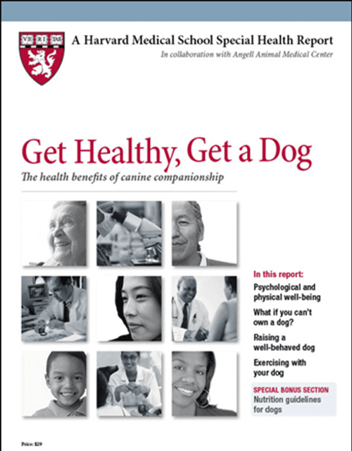 Get Healthy, Get a Dog: The health benefits of canine companionship - SHR