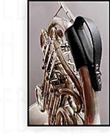 Clebsch Strap for Horn