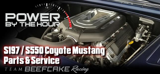 pbh-coyote-swap-parts-specialists-beefcake-racing.jpg
