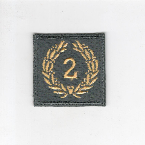 WW 2 US Army Meritorious Unit Citation 2nd Award Patch Inv# H148