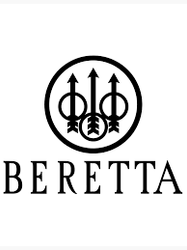 Beretta Special Purchase
