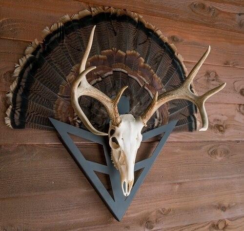 Do All Traps Do-all Strut-n-skull Turkey - Fan/european Skull Mount