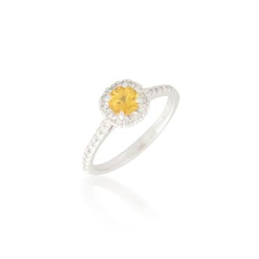 Round  Yellow Sapphire Ring with Diamond Halo