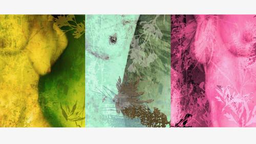 Disclose Tritych | Framed 28 x 48 cm | Digital Art Giclée Print on paper | Image 16 x 36 cm