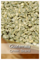 Guatemala Fair Trade Organic Green Coffee Beans