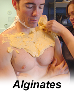 Chest Casting with Alginate | Accu-Cast