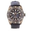 Tudor Black Bay Bronze 79250BA