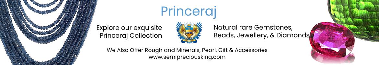 princeraj-banner.jpg
