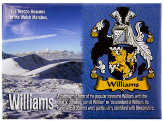 Williams Welsh Ancestry Family Name Metallic Picture Magnet