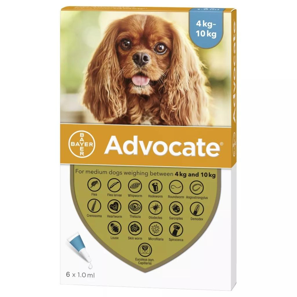 Advocate för hundar 4,1-10 kg - Aqua 6 doser - Förpackning Frambild