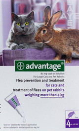Advantage for Cats over 4 kg (over 9 lbs) - Purple 4 Doses