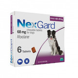 Nexgard Chews for Dogs 10.1-25 kg (24.1-60 lbs) - Purple 6 Chews