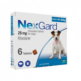 Nexgard Chews for Dogs 4.1-10 kg (10.1-24 lbs) - Blue 6 Chews