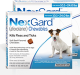 Nexgard Chews for Dogs 4.1-10 kg (10.1-24 lbs) - Blue 12 Chews