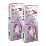 Bravecto PLUS Topical Solution for Cats 6.25-12.5 kg (13.8-27.5 lbs) - Purple 2 Doses