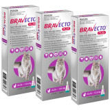 Bravecto PLUS Topical Solution for Cats 6.25-12.5 kg (13.8-27.5 lbs) - Purple 3 Doses