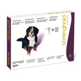 Stronghold for Dogs 40.1-60 kg (85.1-130 lbs) - Plum 6 Doses