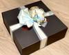 Spoiling Mum - Blue Bow