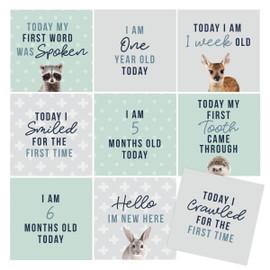 Milestone Cards   Newborn Gift