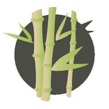 material18-bamboo.png