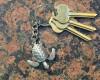 Sea Turtle Pewter Key Chain