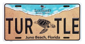 Turtle Front License Plate