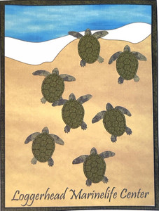 Sea Turtle Hatchlings Note Card