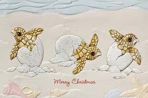 Christmas Cards Turtle Tidings - Box of 16