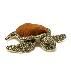 Tilli Turtle