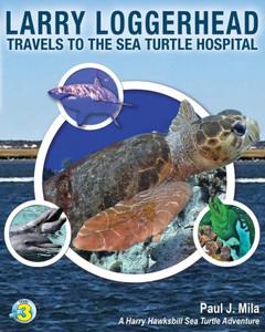 Larry Loggerhead Travels to the Sea Turtle Hospital