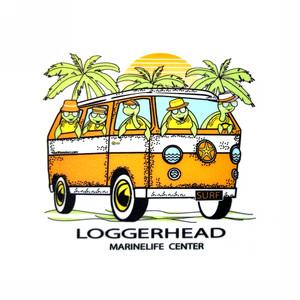 On The Road Again Sea Turtles LMC Sticker