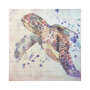 Watercolor Sea Turtle Charmer