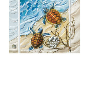 Turtle Twins Cards - Box of 9