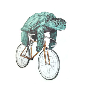 Sea Turtle on Bike Sticker