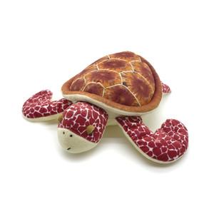 Luna Loggerhead Turtle