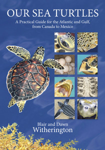 Our Sea Turtles Book