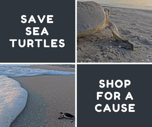 8 Sea Turtle Inspired Items
