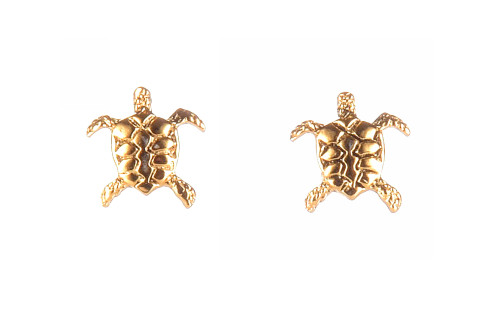 Sea Turtle Post Earrings - Natural History