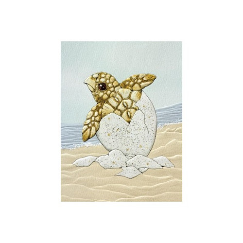 Sea Turtle Hatchling Note Card