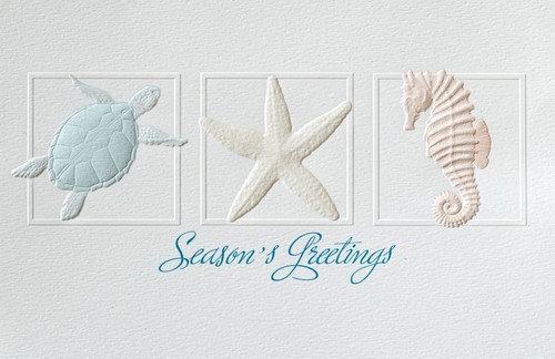 Christmas Cards Coastal Trio - Box of 16