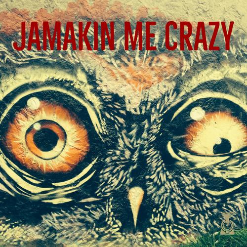 JaMakin Me Crazy