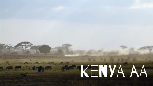Kenya AA Plus