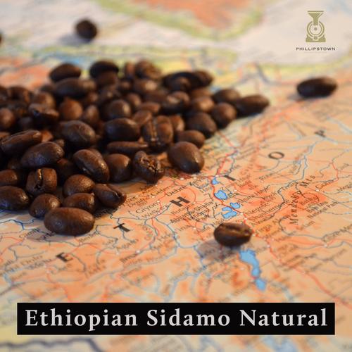 Ethiopian Sidamo Washed
