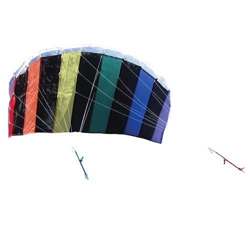 """Air Foil Dual Control Sport - 50"""" Kite"""
