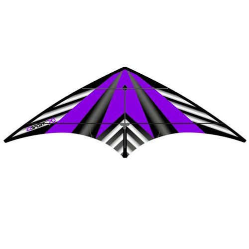 Dual Control Sport - EZ Sport 70 Purple Stripe Kite