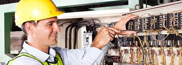 Electrical Repair Services Dunedin